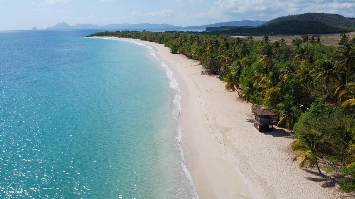 Plage de Sainte-Anne, Martinique ©VILONDIS