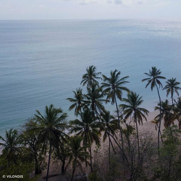 Plage de Sainte-Anne, Martinique - photographie par drone réalisée par ©Vilondis
