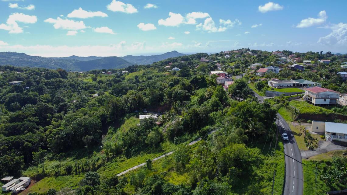 Rivière salée, Martinique photographie arienne par drone ©Vilondis